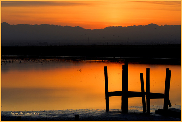 _dsc5223-600-mail-morning_of_the_salton_sea